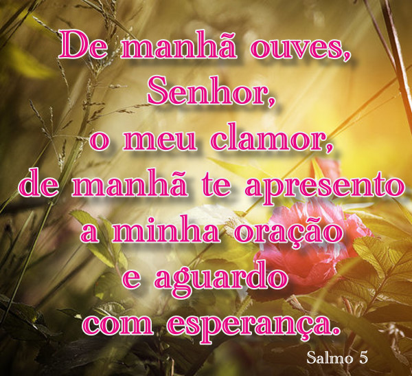 salmo-5